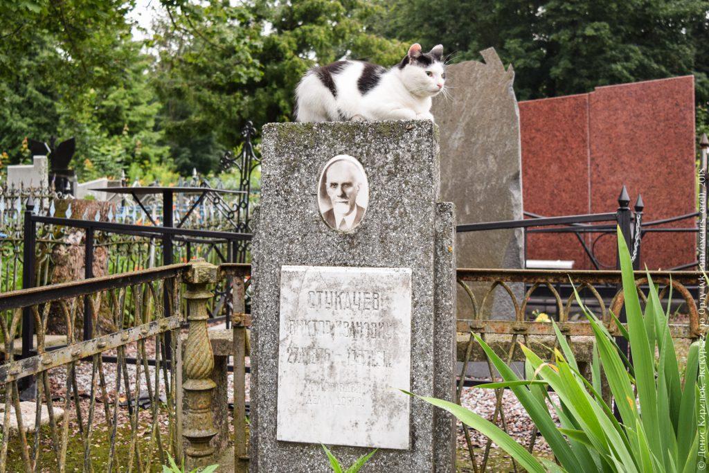 Кошка на надгробии