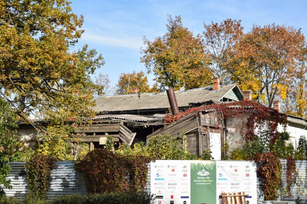 Руинированное деревянное здание, утопающее в растительности осенних цветов