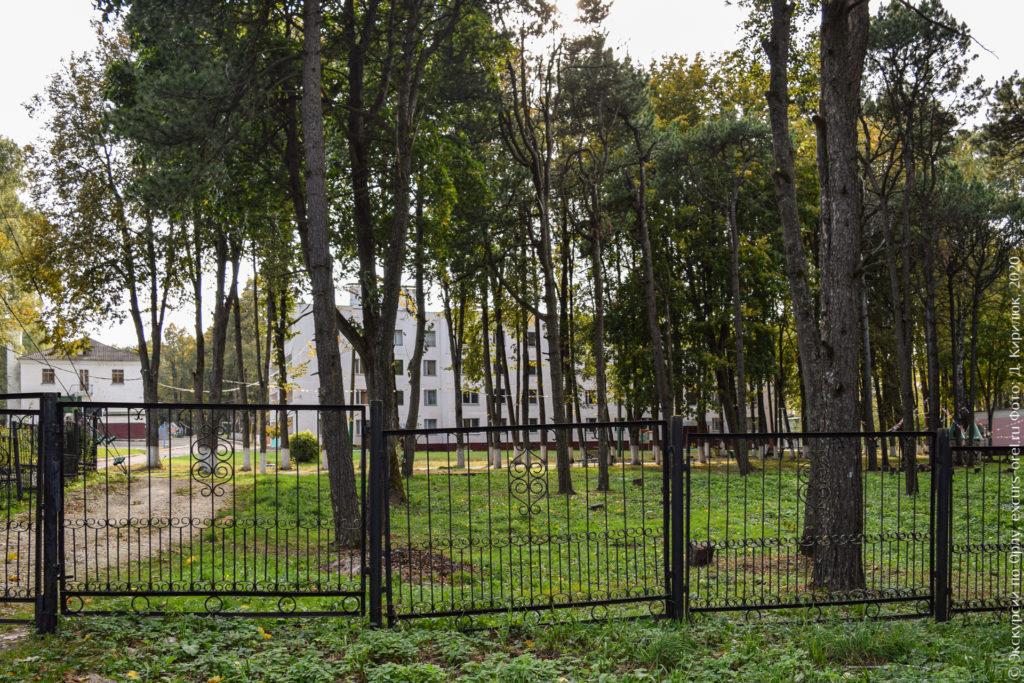 Кирпичные корпуса за забором и высокими кедрами.